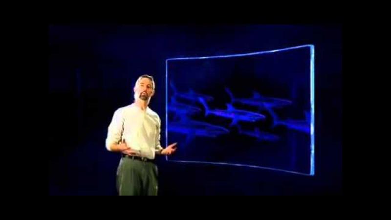 BBC: Дикий Мир Будущего: 200 миллионов лет спустя / 3 серия