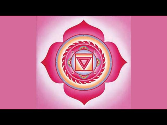 Активация Первая (корневая) чакра Муладхара Muladhara chakra