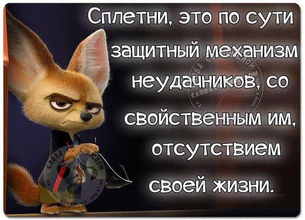 https://pp.vk.me/c630919/v630919534/30138/nvUHRQBrQPs.jpg