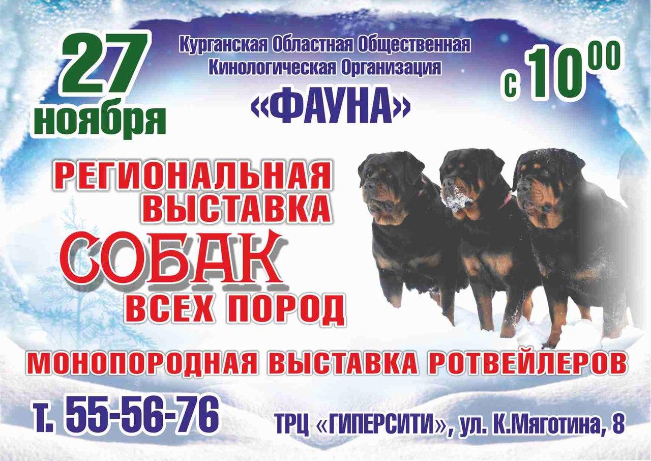 е1 форум любителей животных