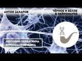 Антон Захаров - Чёрное и белое в нейронауке