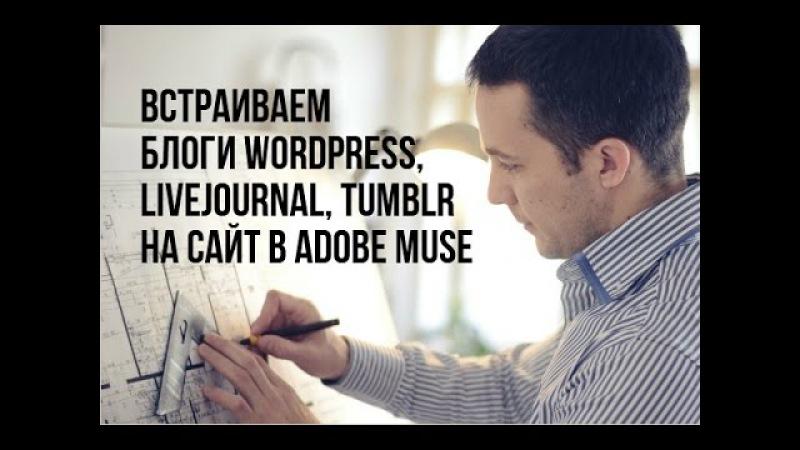 Встраивание блога на Wordpress, Livejournal, Tumblr на ваш сайт в Adobe Muse