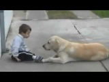 Little Boy w Down's Syndrome &amp His Dog - Unconditional Love of Man's Best Friend