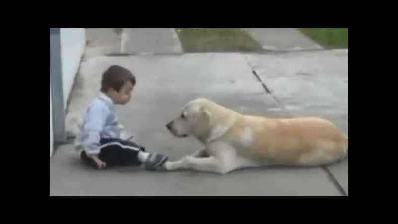 Little Boy w Down's Syndrome His Dog - Unconditional Love of Man's Best Friend