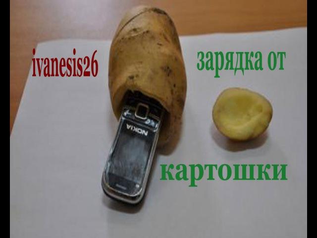 как зарядить телефон от картошки