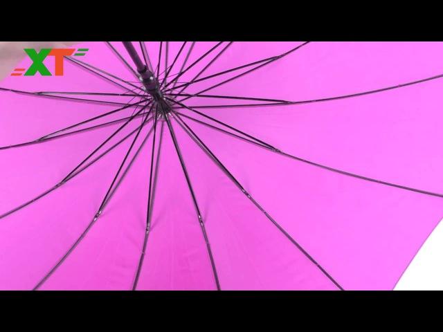 Зонт-трость женский, хамелеон, атлас, 16 спиц, пластиковая спица, антиветер, Китай