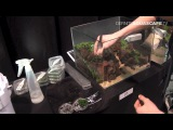 Setting up Dennerle Scaper's tank no. 25 for The Art of the Planted Aquarium 2015