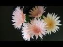 Gerbera paper flower Làm hoa đồng tiền giấy nhún 2016