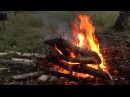 🎧 Костер. Живой огонь. Звуки ночного леса у костра