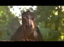 Динозавр 2000