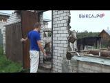 Выкса.РФ: Помощь людей помогла не опустить руки