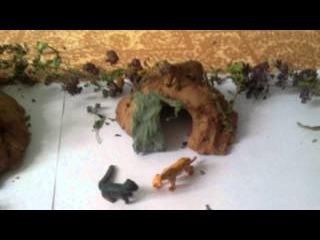 Коты воители. Мой лагерь Грозовова племени !