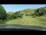 GEDEBEY Азербайджанская флора