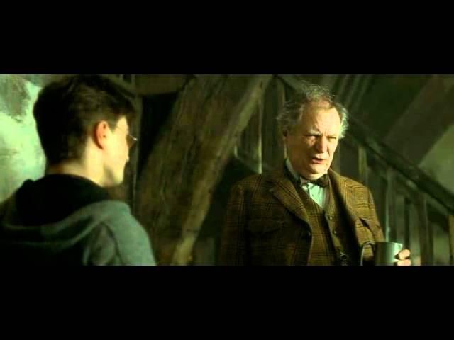 Гарри Поттер и Особая Уличная Магия ( смешной перевод )