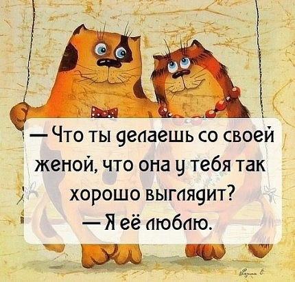 https://pp.vk.me/c630921/v630921212/36caa/cbykjEfxcHc.jpg