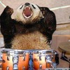 «Drum Drummer» Репетиционная точка на Научной
