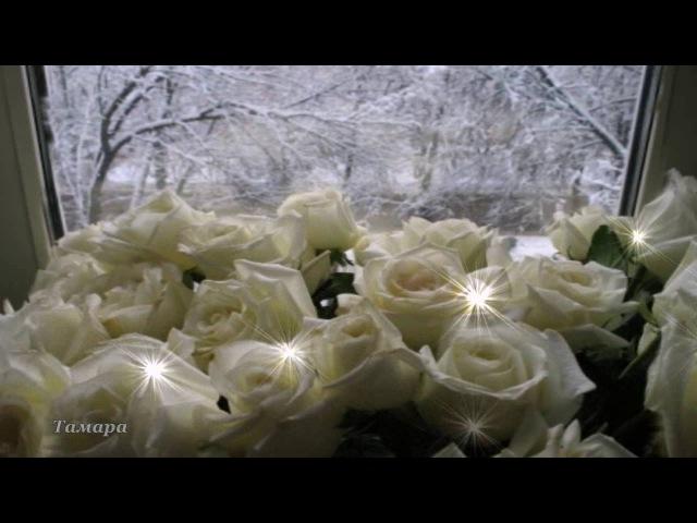 Белые розы. Юрий Шатунов. Автор монтажа:Тамара Ветошева.