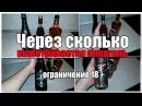 Через сколько выветривается алкоголь из организма Видео версия Просто о сложном