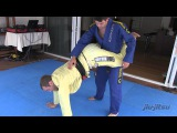 Issue #10 Jeff Glover's Flying Circus - Jumping Reverse Guard