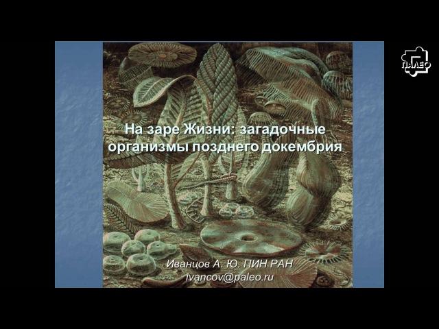 Андрей Иванцов На заре Жизни загадочные организмы позднего докембрия