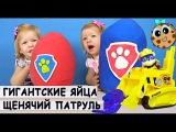Щенячий патруль гигантские яйца cюрпризы игрушки для детей - Детский влог