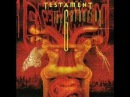 Testament - The Gathering - D.N.R. Do Not Resuscitate