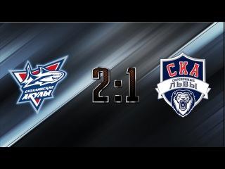 МХЛ 15/16. Сахалинские Акулы VS СКА-Серебряные Львы (2:1 ОТ) 28.02.2016