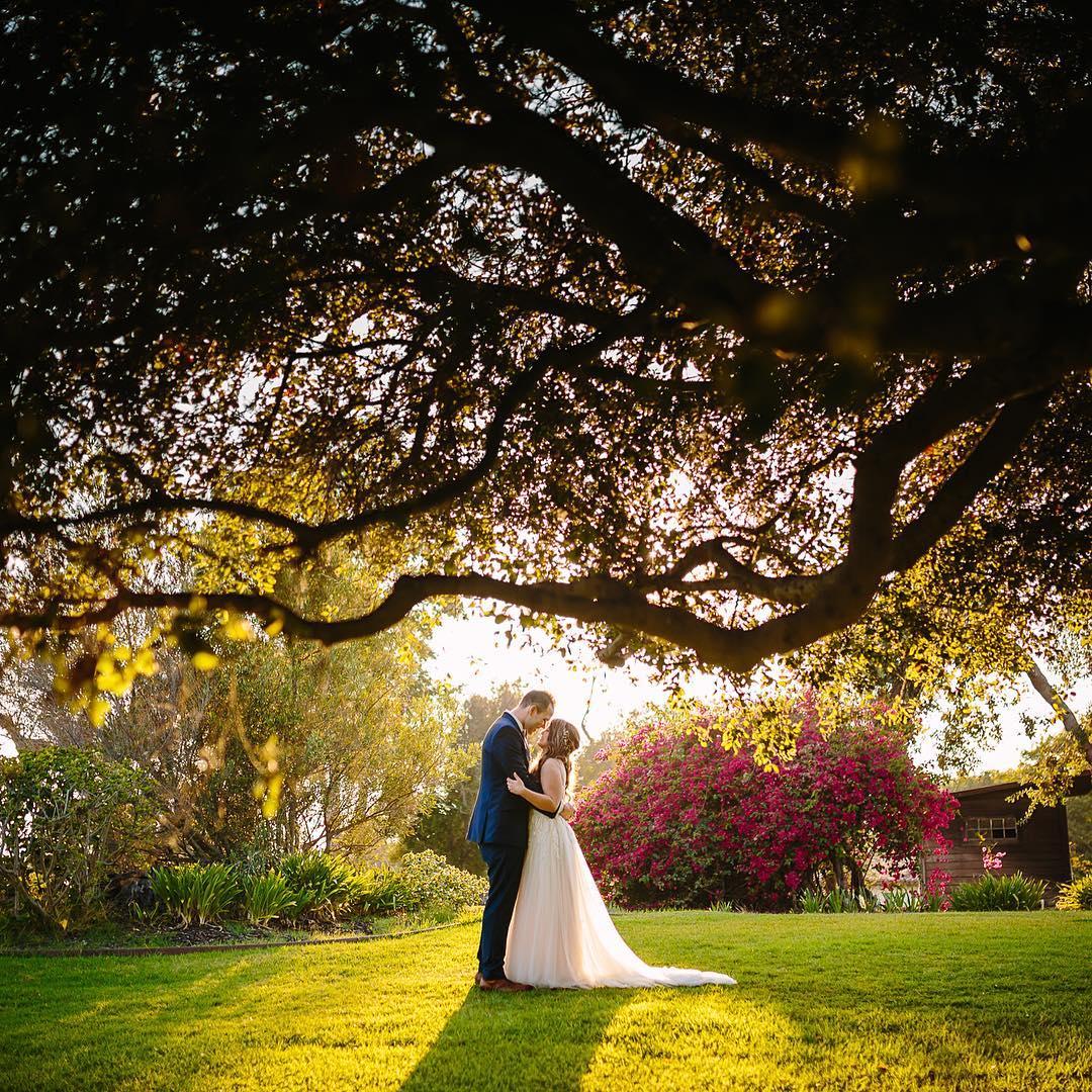 pPU6huBZBL0 - Фотографии последних летних свадеб (5 фото)