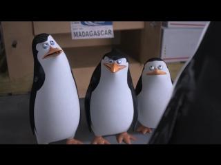 Пингвины Мадагаскара (2014) - Трейлер №03 (Русский язык) [720p]