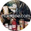 Галерея МОЛОДОЕ / molodoe.com