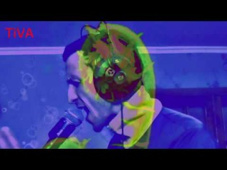 DAN TiVA - Папоротник (Ольга Арефьева Live Looping Cover)