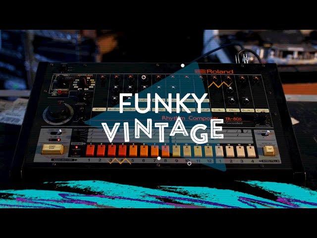 Funky Vintage Roland TR-808 Rhythm Composer | Reverb Gear Demo