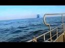 НЛО. Объект ныряет под воду