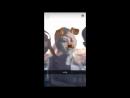 Mija's Snapchat 1