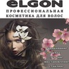 ELGON Moldova