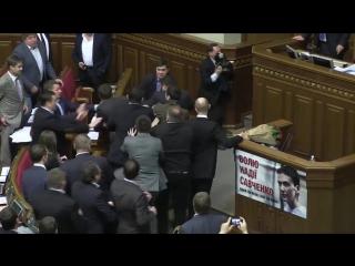 Драка шимпанзе в верховной раде украины