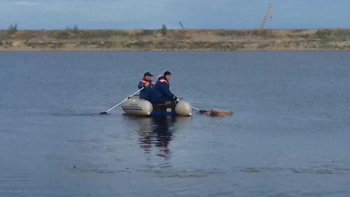 В водоеме якутской ТЭЦ выловили труп женщины