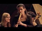 G.Ph. Telemann Concerto for Traverso and Recorder in E minor, TWV 52e1 - Bremer Barockorchester