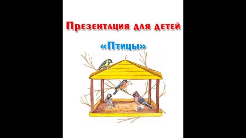 Зимующие и перелетные птицы, презентация для детей