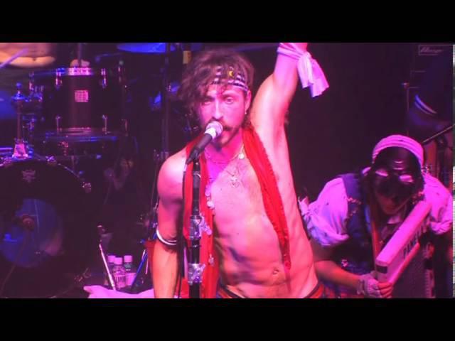 Gogol Bordello - Live From Axis Mundi - Dogs Were Barking