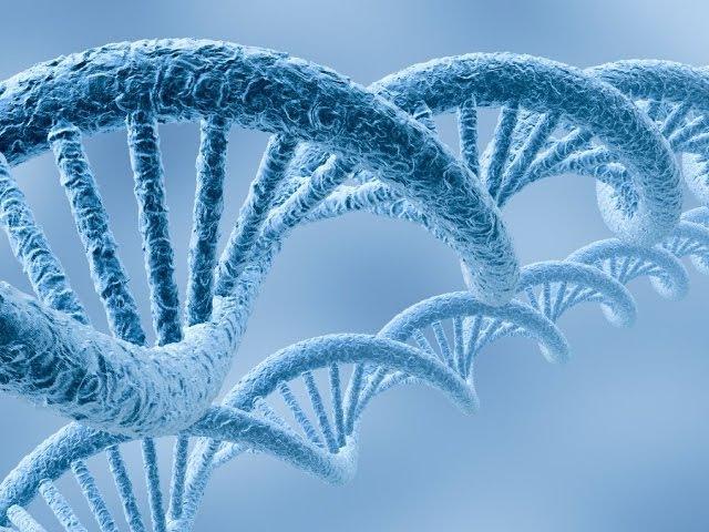 Воздействие музыки и человеческой речи на гены и ДНК