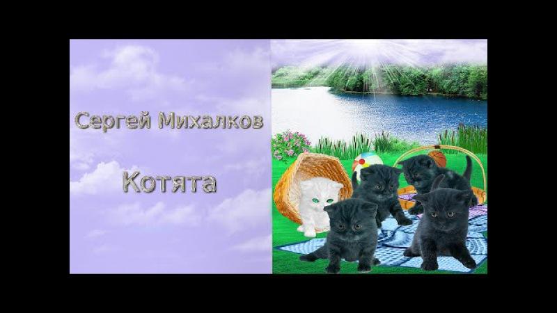 Стихи Сергея Михалкова Котята