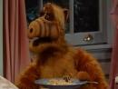 Alf Quote Season 2 Episode 16_AlfKateWillie_Rus_Хотите фрикаделек