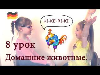 Deutsch mit Ksenia. Немецкий с Ксенией. Урок 8. Домашние животные.