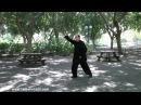 Дмитрий Дейч: разминка для занятия тайцзицюань (часть 2)