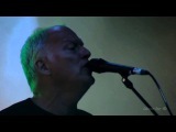 Comfortably Numb David Gilmour Zbigniew Preisner Live in the Gdansk