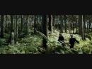 Remus Sirius Running Up That Hill