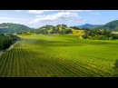 Million Dollar Estate White Oak Ranch and Vineyard California Property For Sale