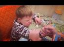 Instagram video by Александр Сёмин.Семену 4 годика