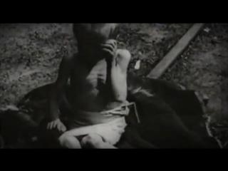 Новочеркасская Голгофа. Расстрел рабочих 1962 года
